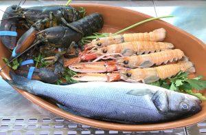 pescado fresco restaurante en Valencia
